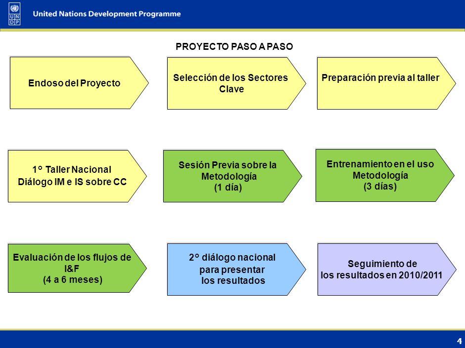3 Resultados del proyecto Evaluación de los flujos de inversión y flujos financieros (FI&FF) en sectores clave desde la perspectiva de la adaptación o