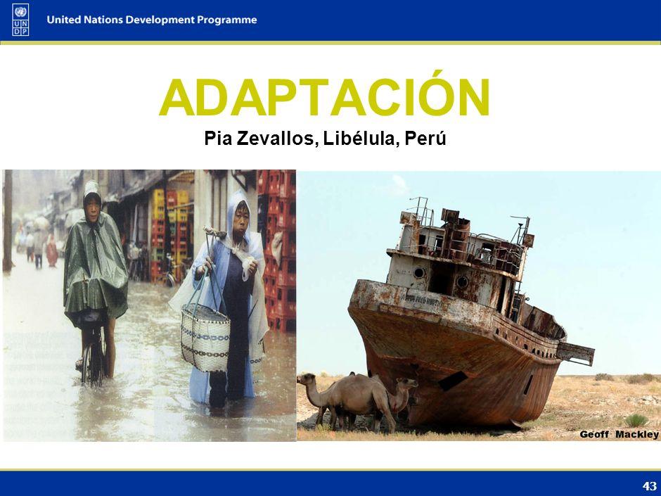 42 Políticas y medidas de desarrollo sostenible (SD-PAMs) Propuestas en consideración en las negociaciones Establecimiento de objetivos de mitigación