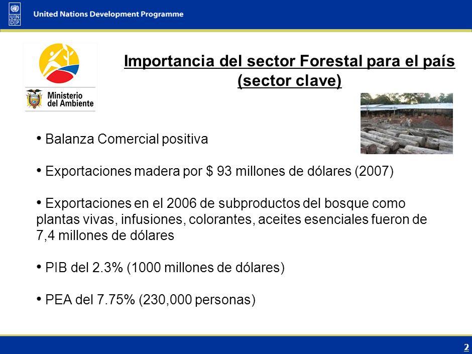 13 DIÁLOGO INTERMINISTERIAL SOBRE EL CAMBIO CLIMÁTICO (Sector Forestal) Quito, Ecuador Noviembre, 2009