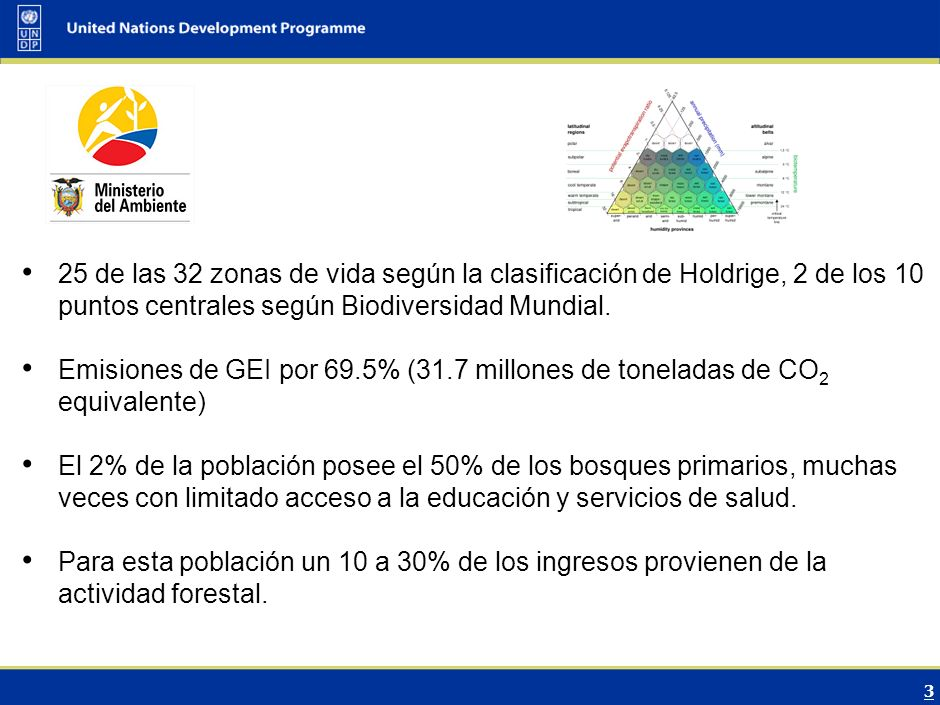 4 Descripción del Sector Forestal Tasa de deforestación 1.47% anual (230,000 Ha/año).