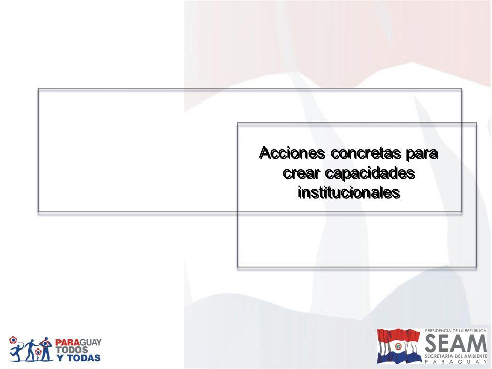Acciones concretas para crear capacidades institucionales