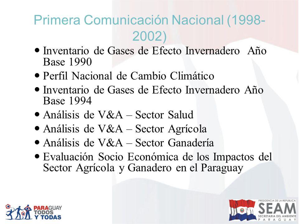 Primera Comunicación Nacional (1998- 2002) Inventario de Gases de Efecto Invernadero Año Base 1990 Perfil Nacional de Cambio Climático Inventario de Gases de Efecto Invernadero Año Base 1994 Análisis de V&A – Sector Salud Análisis de V&A – Sector Agrícola Análisis de V&A – Sector Ganadería Evaluación Socio Económica de los Impactos del Sector Agrícola y Ganadero en el Paraguay