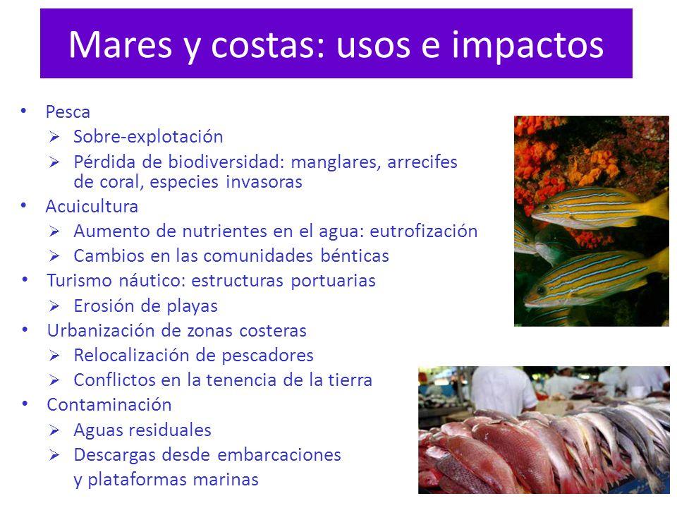Mares y costas: usos e impactos Pesca Sobre-explotación Pérdida de biodiversidad: manglares, arrecifes de coral, especies invasoras Acuicultura Aument