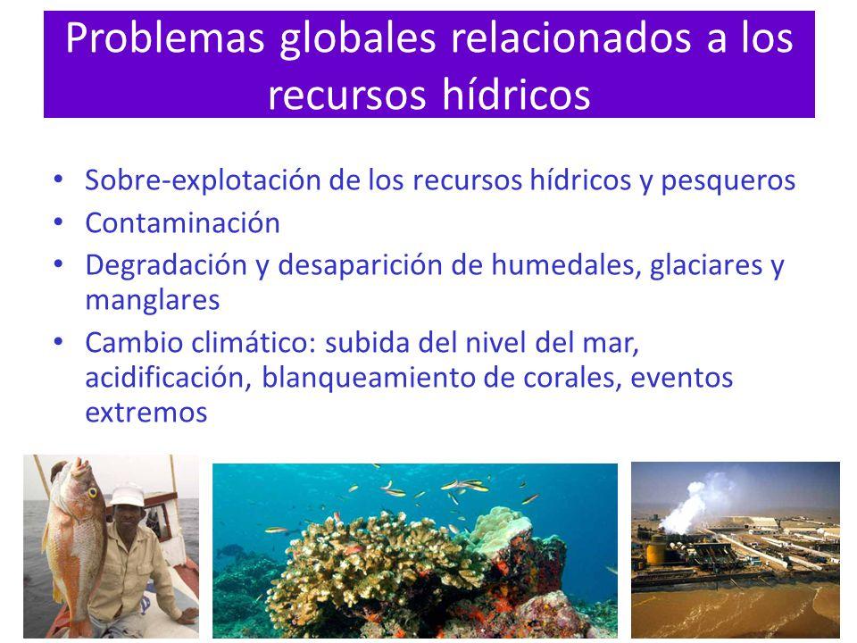 Problemas globales relacionados a los recursos hídricos Sobre-explotación de los recursos hídricos y pesqueros Contaminación Degradación y desaparició