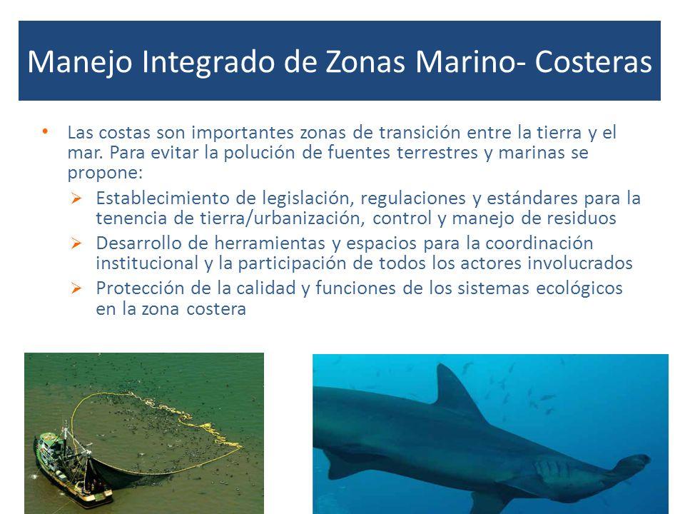 Manejo Integrado de Zonas Marino- Costeras Las costas son importantes zonas de transición entre la tierra y el mar. Para evitar la polución de fuentes