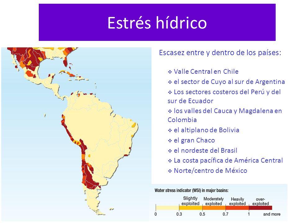 Estrés hídrico Escasez entre y dentro de los países: Valle Central en Chile el sector de Cuyo al sur de Argentina Los sectores costeros del Perú y del