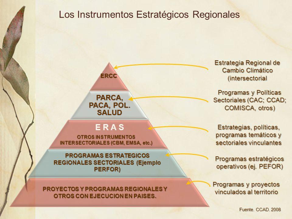 Los Instrumentos Estratégicos RegionalesERCC PARCA, PACA, POL. SALUD Estrategia Regional de Cambio Climático (intersectorial Programas y Políticas Sec