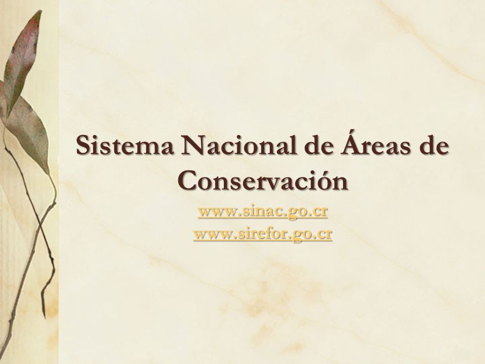 Sistema Nacional de Áreas de Conservación www.sinac.go.cr www.sirefor.go.cr www.sinac.go.cr www.sirefor.go.cr www.sinac.go.cr www.sirefor.go.cr