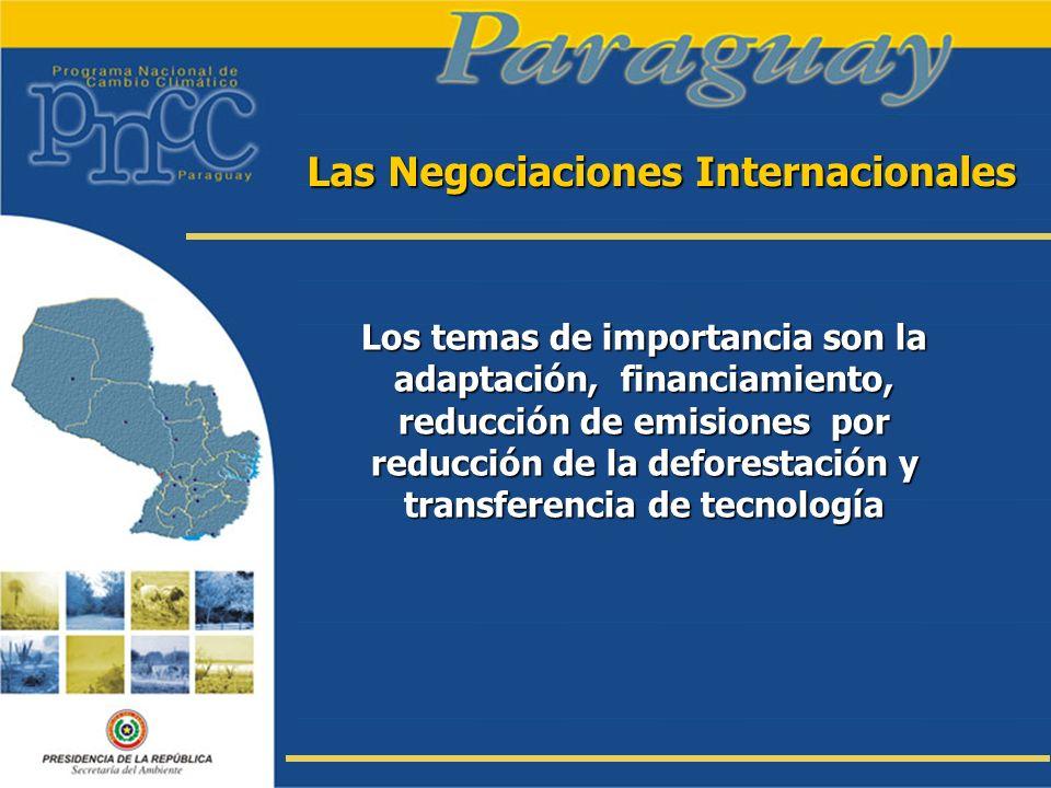 Las Negociaciones Internacionales Los temas de importancia son la adaptación, financiamiento, reducción de emisiones por reducción de la deforestación