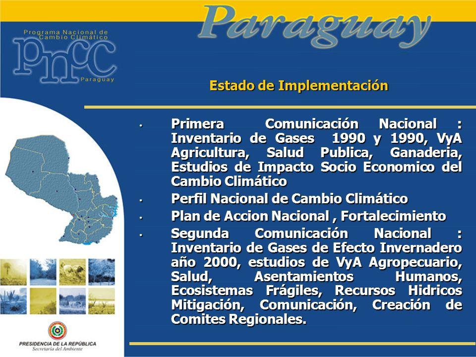 Estado de Implementación Primera Comunicación Nacional : Inventario de Gases 1990 y 1990, VyA Agricultura, Salud Publica, Ganaderia, Estudios de Impac