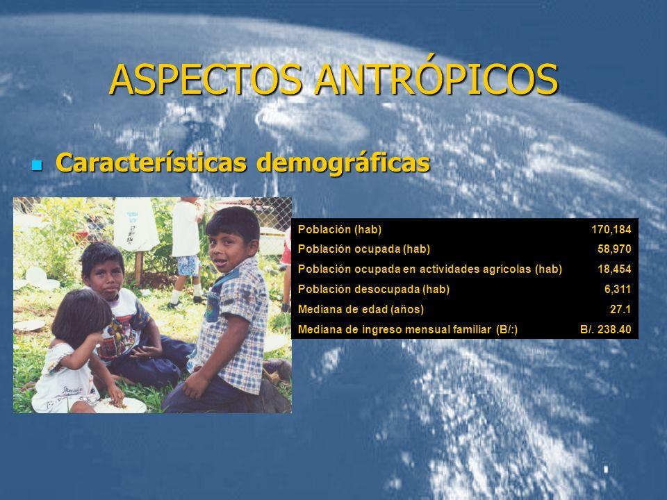 ASPECTOS ANTRÓPICOS Características demográficas Características demográficas Población (hab)170,184 Población ocupada (hab)58,970 Población ocupada e