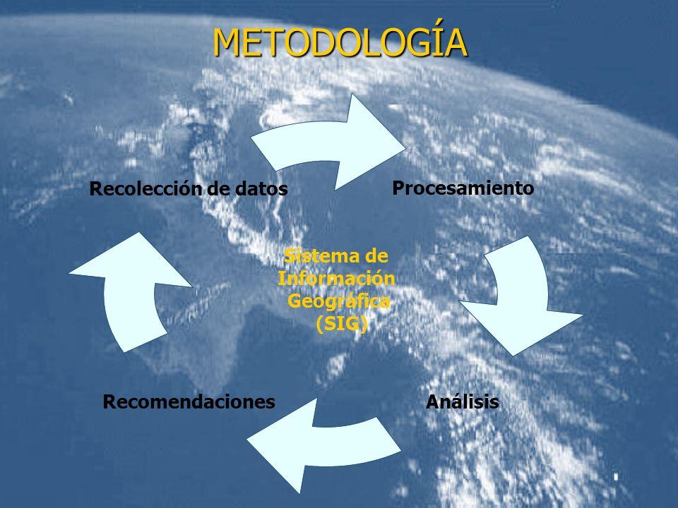 METODOLOGÍA Sistema de Información Geográfica (SIG) Procesamiento AnálisisRecomendaciones Recolección de datos