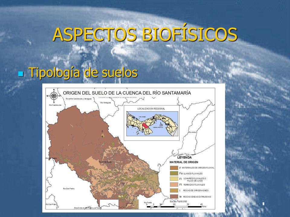 ASPECTOS BIOFÍSICOS Tipología de suelos Tipología de suelos
