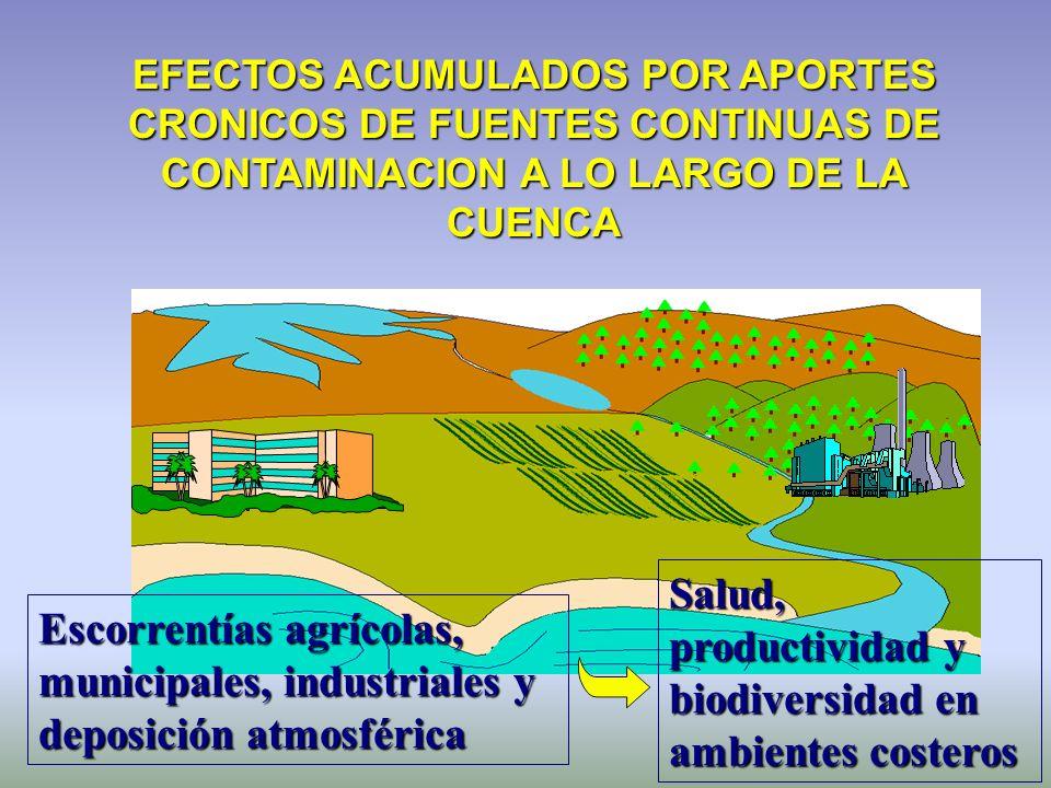 EFECTOS ACUMULADOS POR APORTES CRONICOS DE FUENTES CONTINUAS DE CONTAMINACION A LO LARGO DE LA CUENCA Escorrentías agrícolas, municipales, industriale