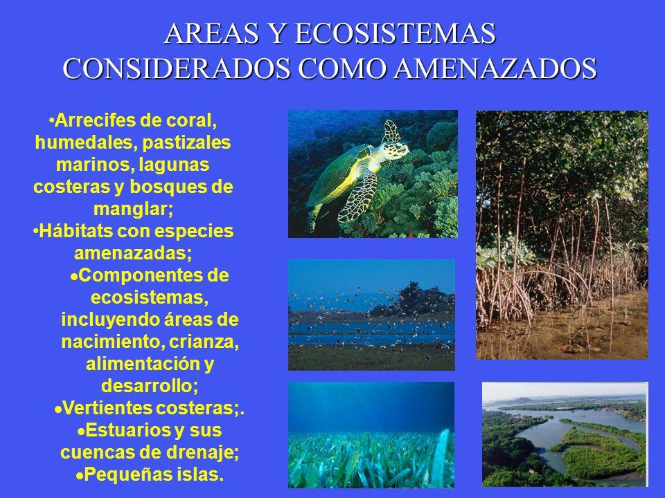 AREAS Y ECOSISTEMAS CONSIDERADOS COMO AMENAZADOS Arrecifes de coral, humedales, pastizales marinos, lagunas costeras y bosques de manglar; Hábitats co