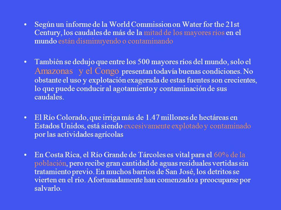 Según un informe de la World Commission on Water for the 21st Century, los caudales de más de la mitad de los mayores ríos en el mundo están disminuye
