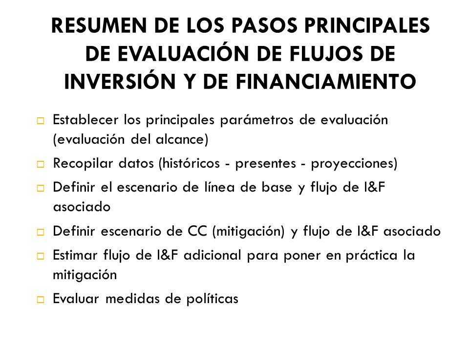 RESUMEN DE LOS PASOS PRINCIPALES DE EVALUACIÓN DE FLUJOS DE INVERSIÓN Y DE FINANCIAMIENTO Establecer los principales parámetros de evaluación (evaluac