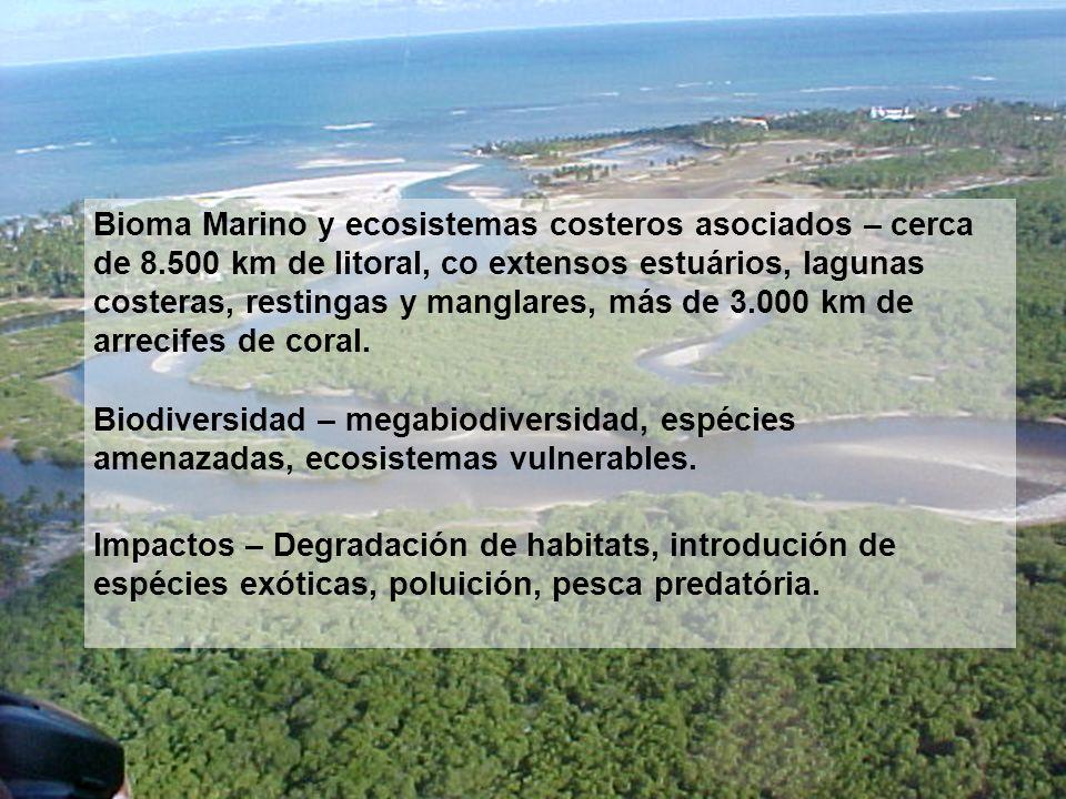 Bioma Marino y ecosistemas costeros asociados – cerca de 8.500 km de litoral, co extensos estuários, lagunas costeras, restingas y manglares, más de 3