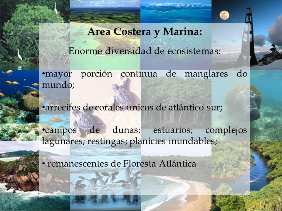 Area Costera y Marina: Enorme diversidad de ecosistemas: mayor porción contínua de manglares do mundo; arrecifes de corales unicos de atlántico sur; c