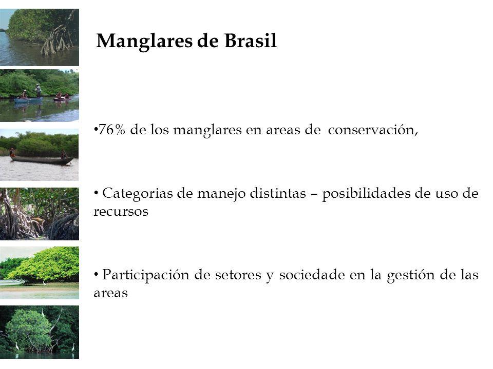 76% de los manglares en areas de conservación, Categorias de manejo distintas – posibilidades de uso de recursos Participación de setores y sociedade