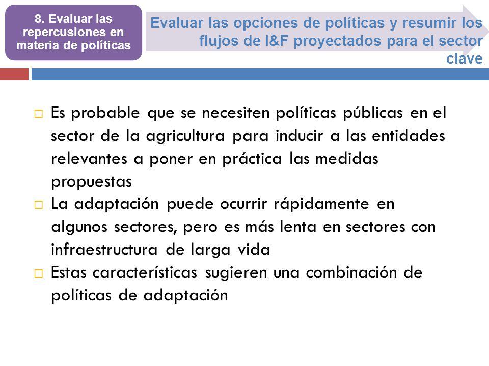 Evaluar las opciones de políticas y resumir los flujos de I&F proyectados para el sector clave 8. Evaluar las repercusiones en materia de políticas Es