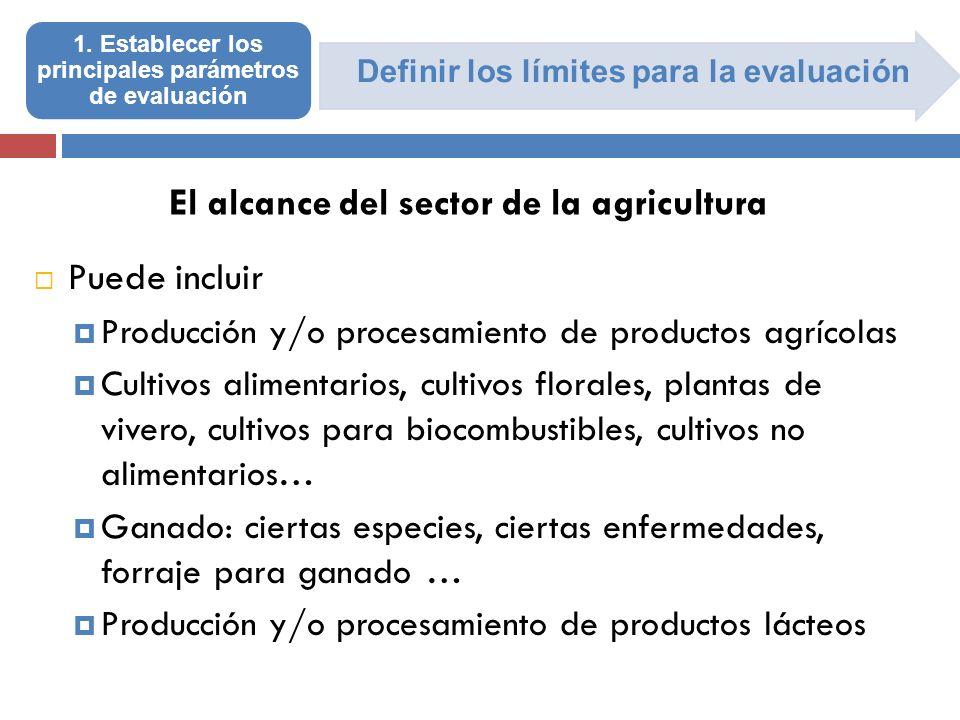 Definir los límites para la evaluación 1. Establecer los principales parámetros de evaluación Puede incluir Producción y/o procesamiento de productos