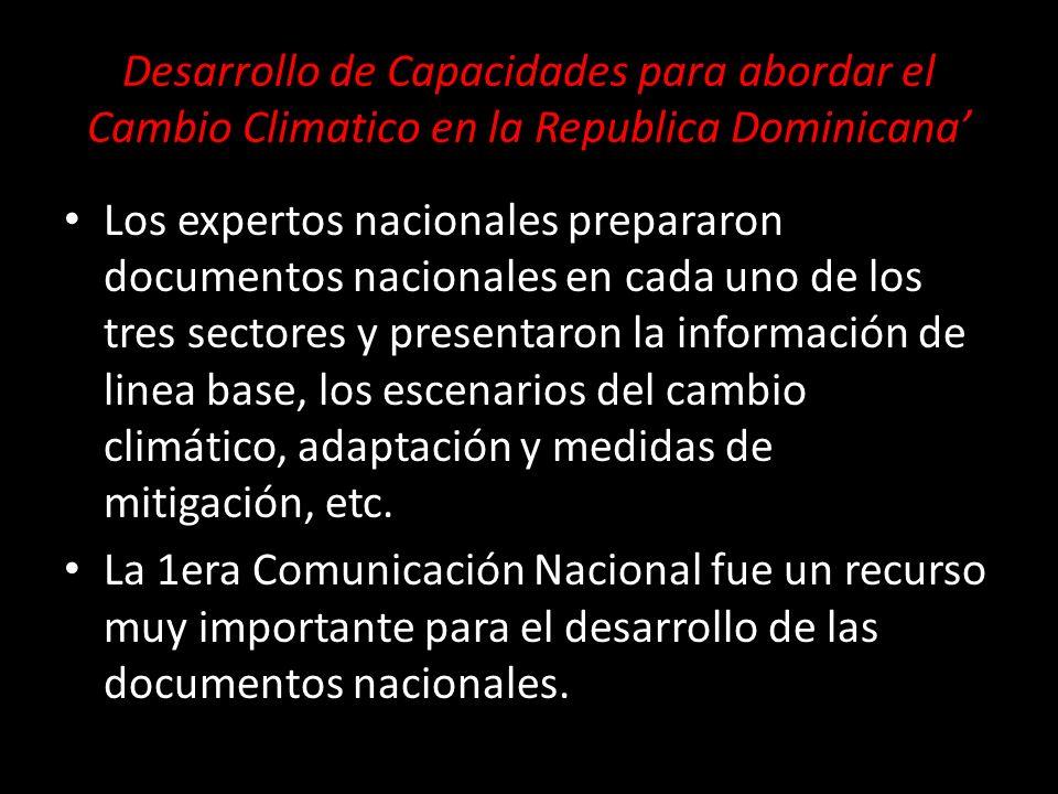 Los expertos nacionales prepararon documentos nacionales en cada uno de los tres sectores y presentaron la información de linea base, los escenarios d