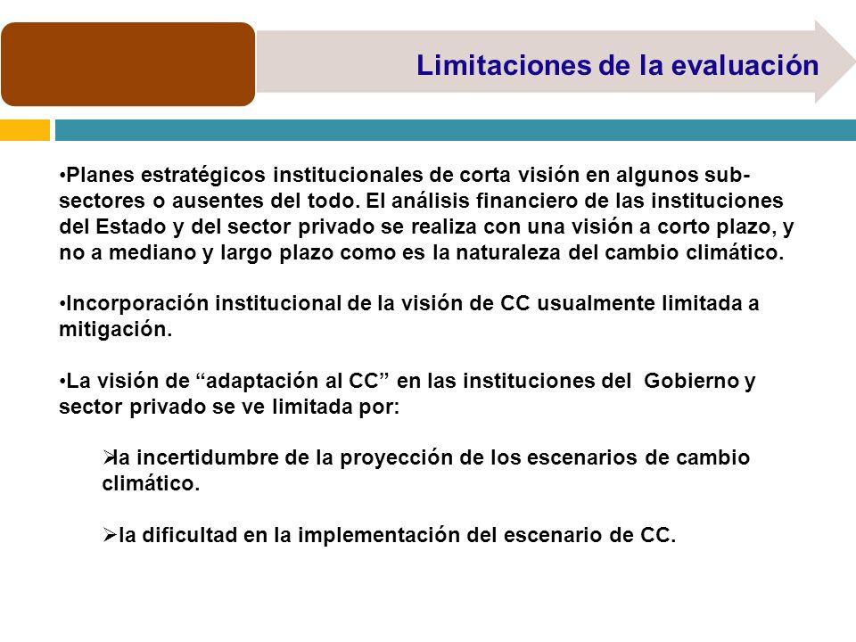 Limitaciones de la evaluación Planes estratégicos institucionales de corta visión en algunos sub- sectores o ausentes del todo. El análisis financiero