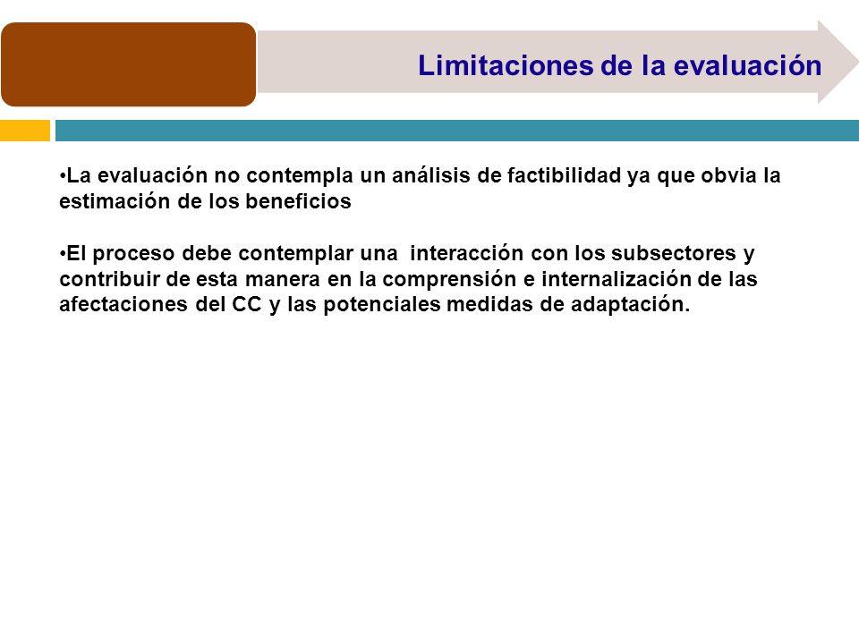 Limitaciones de la evaluación La evaluación no contempla un análisis de factibilidad ya que obvia la estimación de los beneficios El proceso debe cont