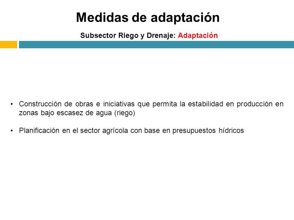 Medidas de adaptación Subsector Riego y Drenaje: Adaptación Construcción de obras e iniciativas que permita la estabilidad en producción en zonas bajo