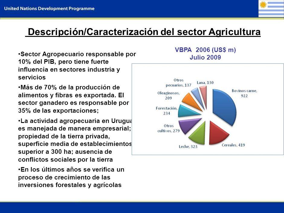 2 Descripción/Caracterización del sector Agricultura Sector Agropecuario responsable por 10% del PIB, pero tiene fuerte influencia en sectores industria y servicios Más de 70% de la producción de alimentos y fibras es exportada.