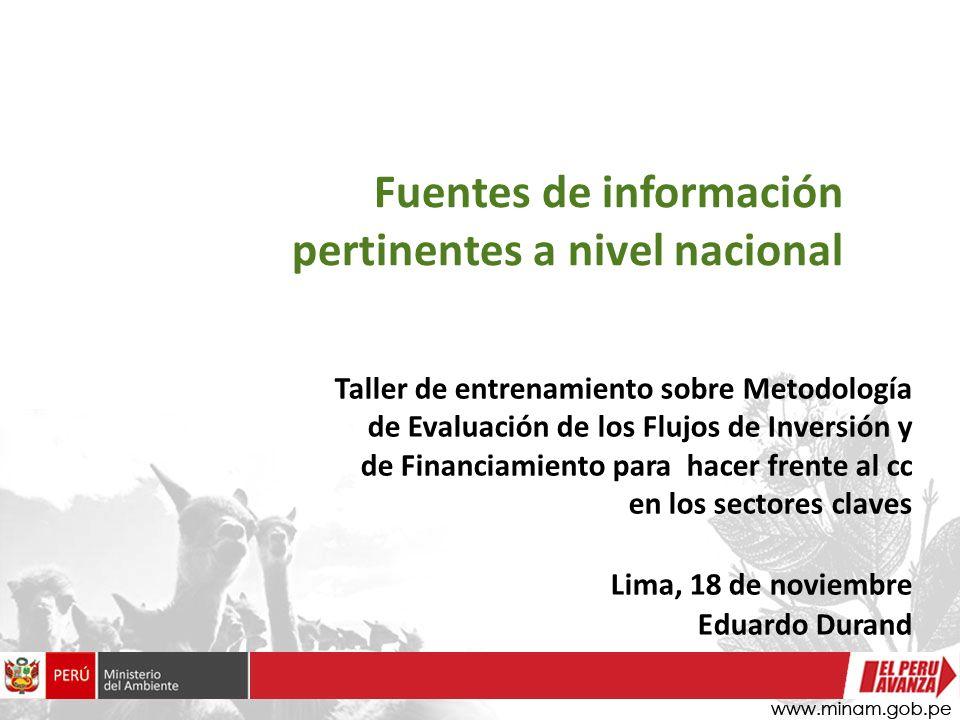 Fuentes de información pertinentes a nivel nacional Taller de entrenamiento sobre Metodología de Evaluación de los Flujos de Inversión y de Financiami