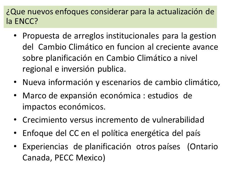 Propuesta de arreglos institucionales para la gestion del Cambio Climático en funcion al creciente avance sobre planificación en Cambio Climático a ni