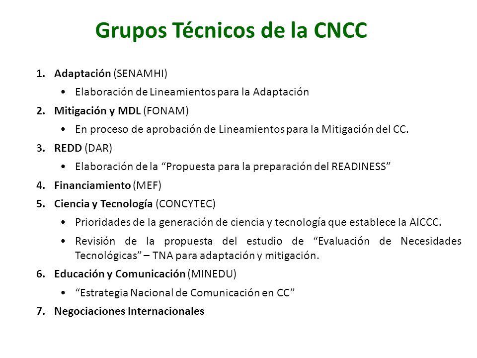 Grupos Técnicos de la CNCC 1.Adaptación (SENAMHI) Elaboración de Lineamientos para la Adaptación 2.Mitigación y MDL (FONAM) En proceso de aprobación d