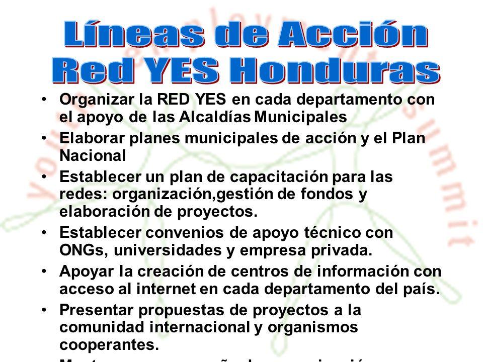 Organizar la RED YES en cada departamento con el apoyo de las Alcaldías Municipales Elaborar planes municipales de acción y el Plan Nacional Establecer un plan de capacitación para las redes: organización,gestión de fondos y elaboración de proyectos.