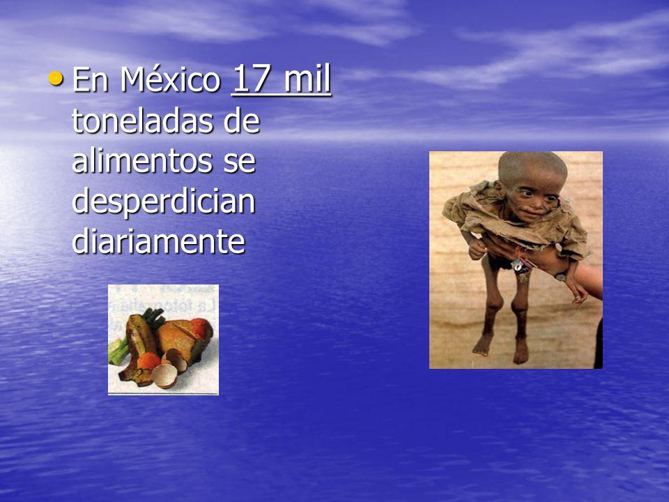 En México 17 mil toneladas de alimentos se desperdician diariamente En México 17 mil toneladas de alimentos se desperdician diariamente
