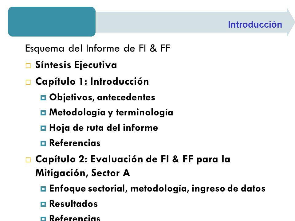 Esquema del Informe de FI & FF Síntesis Ejecutiva Capítulo 1: Introducción Objetivos, antecedentes Metodología y terminología Hoja de ruta del informe