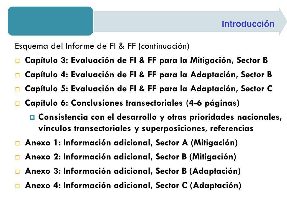 Esquema del Informe de FI & FF (continuación) Capítulo 3: Evaluación de FI & FF para la Mitigación, Sector B Capítulo 4: Evaluación de FI & FF para la