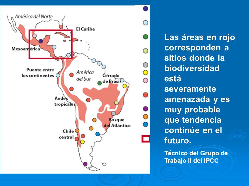 Las áreas en rojo corresponden a sitios donde la biodiversidad está severamente amenazada y es muy probable que tendencia continúe en el futuro. Técni