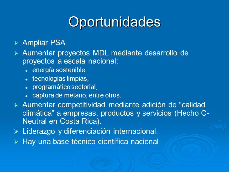 Oportunidades Ampliar PSA Aumentar proyectos MDL mediante desarrollo de proyectos a escala nacional: energía sostenible, tecnologías limpias, programático sectorial, captura de metano, entre otros.