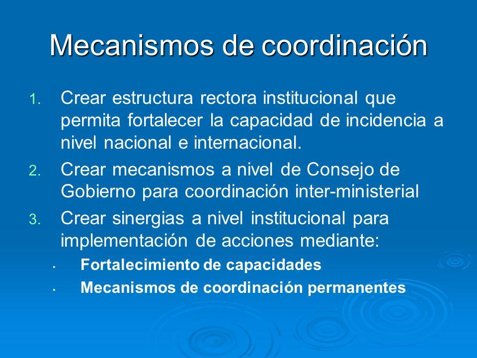 Mecanismos de coordinación 1. 1. Crear estructura rectora institucional que permita fortalecer la capacidad de incidencia a nivel nacional e internaci