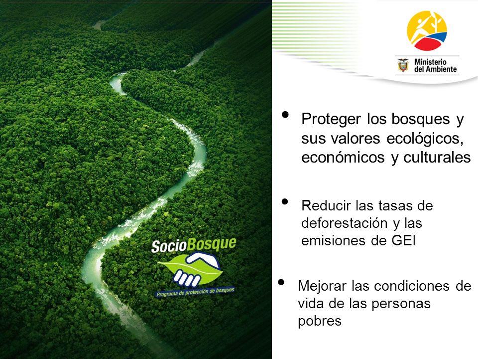 Proteger los bosques y sus valores ecológicos, económicos y culturales Reducir las tasas de deforestación y las emisiones de GEI Mejorar las condicion