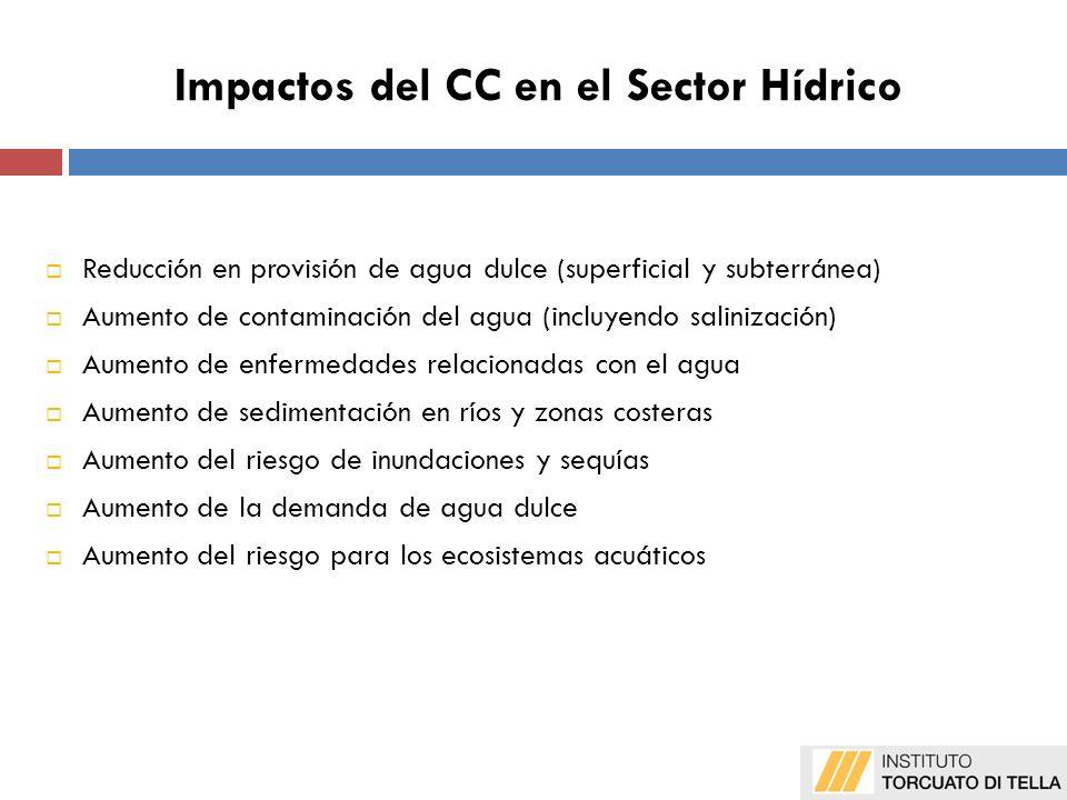 Limitaciones de las proyecciones Otras medidas no menos importantes (no estructurales) Programas de extensión y capacitación relacionados con el agua Programas de educación pública Difusión de la información para promover y capacitar en estas medidas