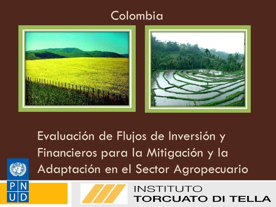 Evaluación de Flujos de Inversión y Financieros para la Mitigación y la Adaptación en el Sector Agropecuario Manual de Metodologías del PNUD sobre FI&F: Adaptación Colombia