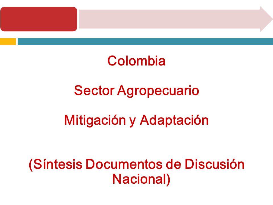 Colombia – Sector Agropecuario Producción agropecuaria: 4 grandes sectores Cereales (arroz y maíz) Oleaginosas Cultivos de alto valor para exportación (café) Producción pecuaria (carne y leche bovina): 45% Producción agrícola: 55% del valor total de producción