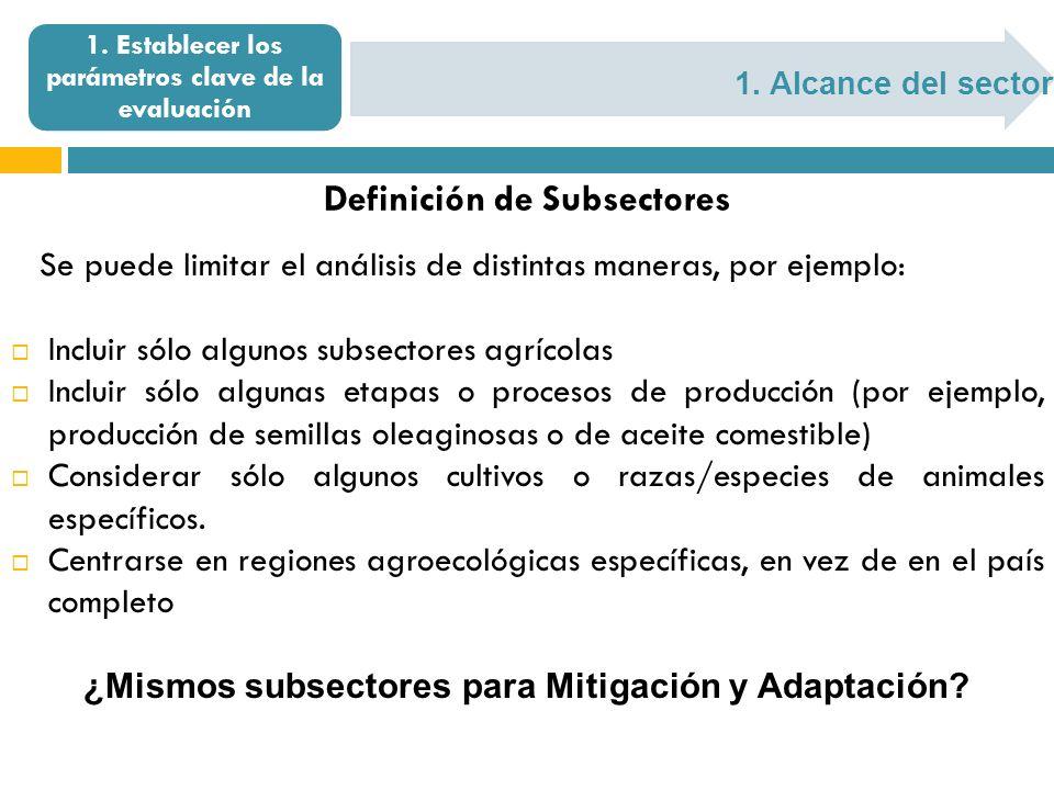 1. Alcance del sector 1. Establecer los parámetros clave de la evaluación Definición de Subsectores Se puede limitar el análisis de distintas maneras,