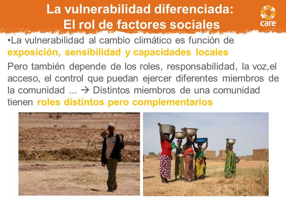 Entorno adecuado Voluntad política Reducción del riesgo de desastres Reducción del riesgo de desastres Desarrollo de la capacidad local Desarrollo de