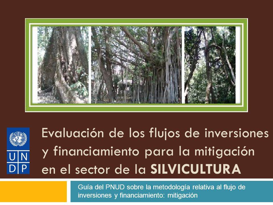 Evaluación de los flujos de inversiones y financiamiento para la mitigación en el sector de la SILVICULTURA Guía del PNUD sobre la metodología relativa al flujo de inversiones y financiamiento: mitigación