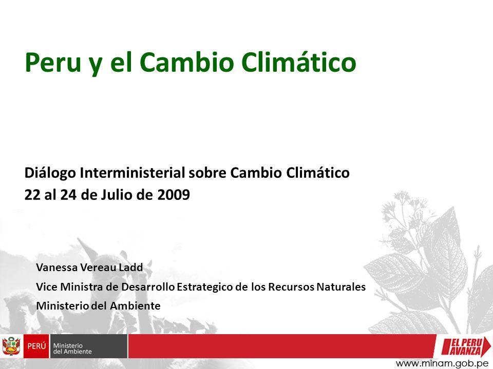 Vanessa Vereau Ladd Vice Ministra de Desarrollo Estrategico de los Recursos Naturales Ministerio del Ambiente Peru y el Cambio Climático Diálogo Inter