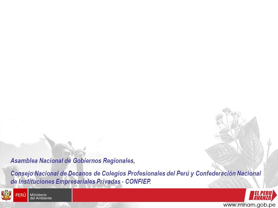 Asamblea Nacional de Gobiernos Regionales, Consejo Nacional de Decanos de Colegios Profesionales del Perú y Confederación Nacional de Instituciones Em